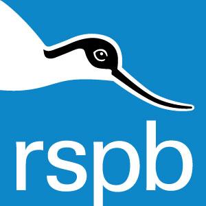 RSPB-logo_no-strapline