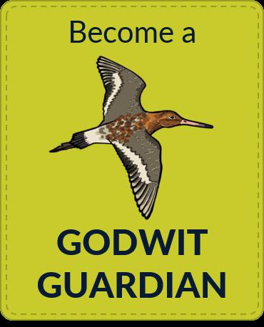 guardianbadge
