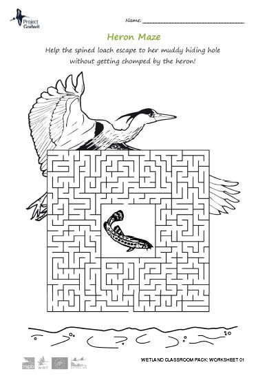 01: Maze