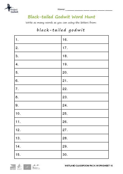 15: Word hunt
