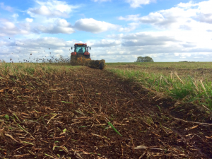 Foot drain renovation at the Nene Washes. Photo by RSPB.