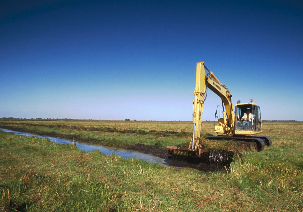 Habitat management at the Nene Washes. Photo by Andy Hay/RSPB.