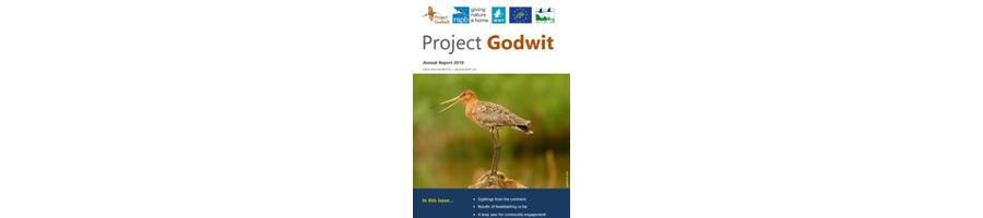 Project Godwit - Annual Summary 2019